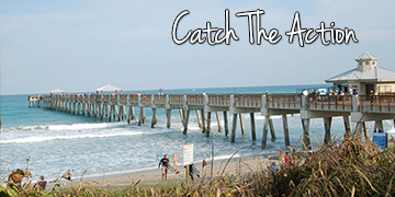 Header -Catch The Action-360x180
